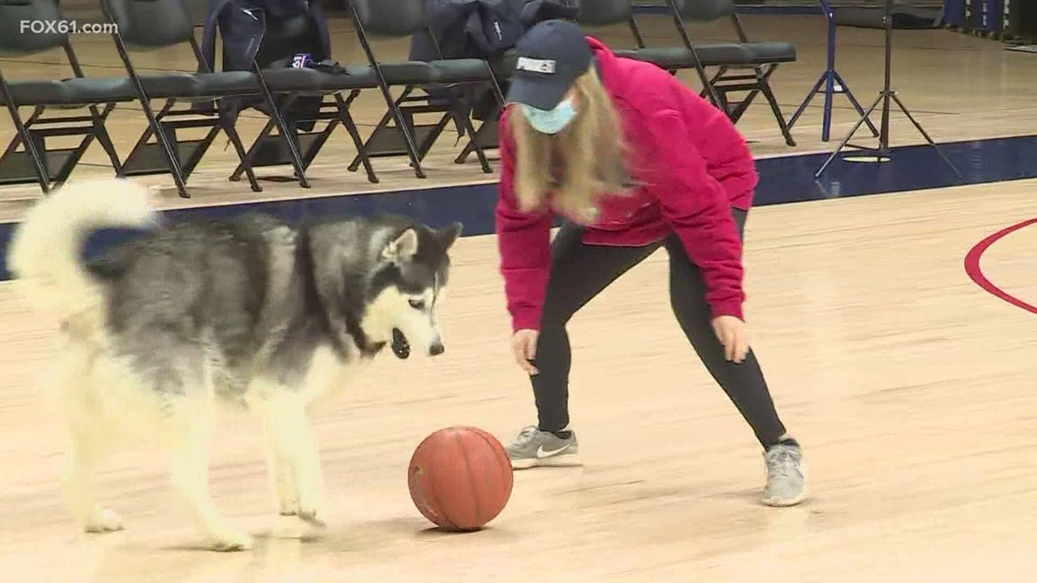 Playing basketball with Jonathan the Husky from UConn!