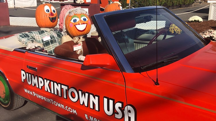 After the pitfalls of 2020, Pumpkintown USA's autumn tradition returns