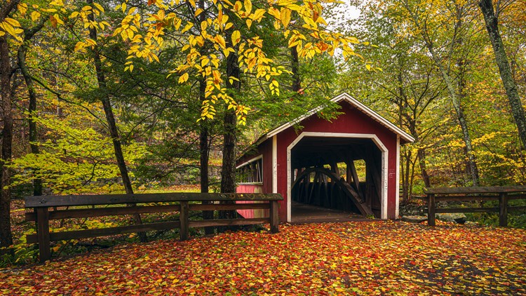 Fall in Connecticut is on | Check out the interactive map for leaf-peeping