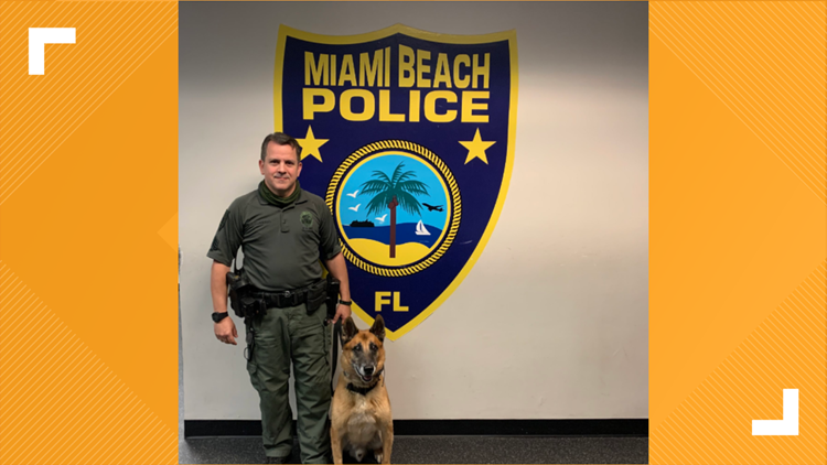 Miami Beach K-9 retires after 11 years of service