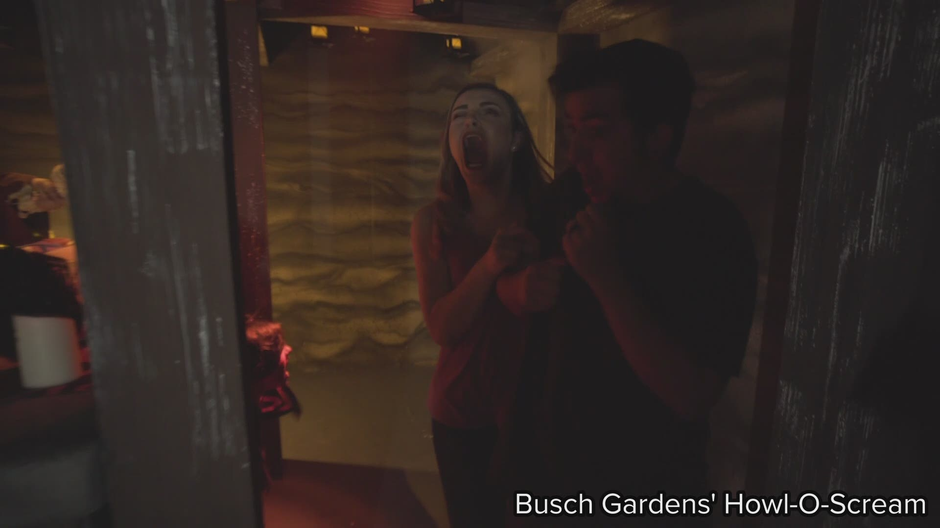 Howl O Scream Celebrates 20 Years Of Fear At Busch Gardens Tampa