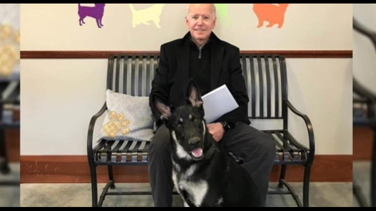 Joe Biden's rescue dog to receive an 'Indoguration' ceremony | Get Uplifted