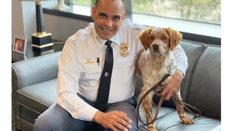 PGPD brings on its newest recruit: An emotional support dog named Pete, who will help console victims and officers