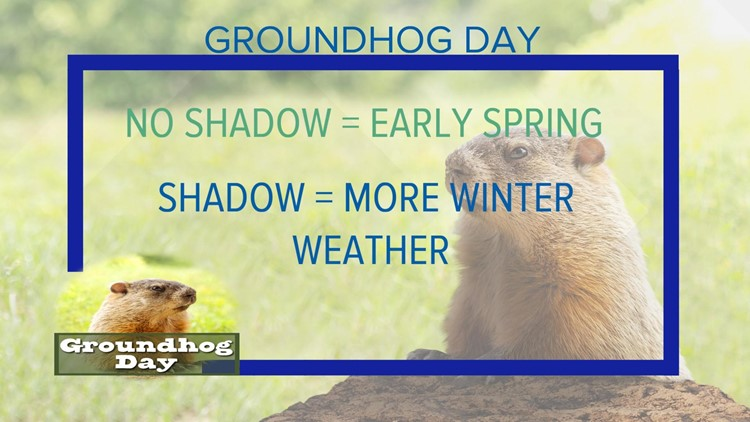 What did the groundhog predict for 2021?
