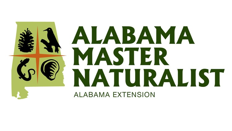 Love nature? Or sharing your knowledge with others? Becoming a master naturalist may be for you!